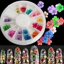 Dried Flower Nail Art Tip UV Gel Acrylic Decoration Manicure Wheel 12 Colors DIY