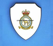 ROYAL AIR FORCE 901 EXPEDITIONARY SUPPORT WING WALL SHIELD (FULL COLOUR)