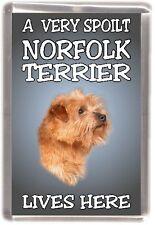 """Norfolk Terrier Dog Fridge Magnet  """"A VERY SPOILT NORFOLK TERRIER LIVES HERE"""""""