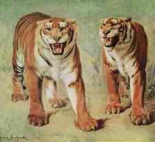 A4 Photo Bonheur Rosa 1822 1899 Tigers Rosa Bonheur 1913 Print Poster