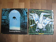 2 LP 's Rare Bird raccolta