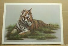 Bengal Tiger Cub by Harold Rigsby-Kentucky Artist Wildlife - Big Cats