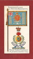 ROYAL DUBLIN FUSILIERS Flag & Badge The DUBS The Blue Caps 1904 original card