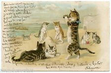 HELENA MAGUIRE. CHATS.HUMANISES.HUMANIZED CATS. VACANCES A LA MER. HOLIDAYS .SEA
