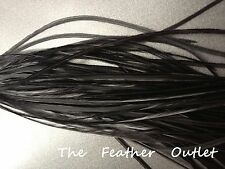Lot 10 Solid Feathers Hair Extensions saddle Natural Furnace BLACK