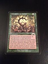 MTG MAGIC EXODUS OATH OF DRUIDS (ITALIAN SERMENT DES DRUIDES) PLAYED