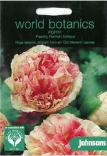 World Botanics Poppy Paeony Flemish Antique seed