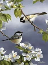 Reeves Medium Painting By Numbers Artist Collection Birds Chickadees