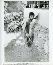 LESLEY-ANNE DOWN  SPHINX   1981 VINTAGE PHOTO ORIGINAL