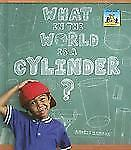 3-D Shapes Ser.: What in the World Is a Cylinder? by Anders Hanson (2008, Other)