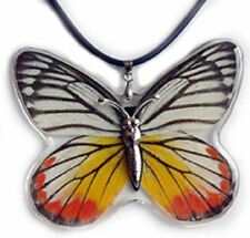 Real Insect Butterfly Necklace Pendant Charm - Delias hyparete (Painted Jezebel)