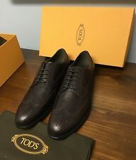 $595 +Tax Tod's **current Season** Oxblood Brogue Oxfords 12/13 US