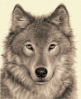 WOLF complete counted cross stitch kit ~ All materials supplied - STUNNING