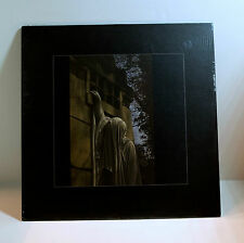 DEAD CAN DANCE Within The Realm Of A Dying Sun 180-gram VINYL LP Sealed 2009