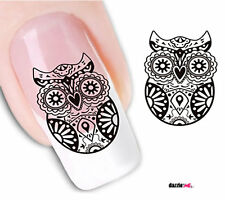 Nail Art Sticker Water Decals Transfer Stickers Decorative Owls (DX1566)