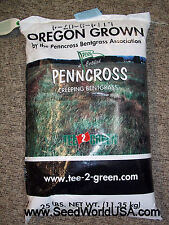 Penncross Creeping Bentgrass Seeds - 2 Lbs. (Certified)