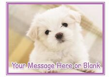Bichon Frise puppy dog ND1 birthday personalised A4 cake topper icing sheet