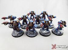 Cataphractii Terminators [x10] Horus Heresy [Warhammer 40,000] Painted