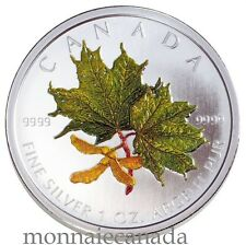 2002 Canada $5 Dollars Fine Silver - Maple Leaf Coloured - Spring  A701 - NO TAX