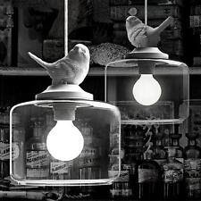 Hot Vintage Classic DIY Big Ceiling Bird Lamp Light Glass Pendant Lighting Home