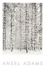 Ansel Adams Pine Forest in the Snow Yosemite National Park B&W Embossed Print