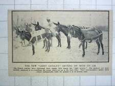 "1917 The New ""light Cavalry"" Useful Surefooted Donkeys Delivering Supplies"