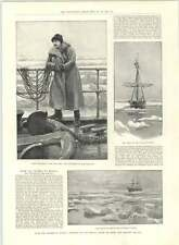 1890 Thames To Siberia Voyage Biscaya Ice Lookout Walrus