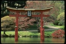 148027 giardino giapponese Brooklyn GIARDINI BOTANICI A4 FOTO STAMPA