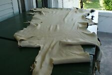 Whitetail deer skin hair-off natural color tanned buckskin 14.1 sq ft nice clear