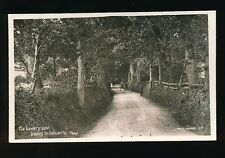 Somerset SELWORTHY The Bowery Lane & pony trap c1900/20s? RP PPC by Vowles
