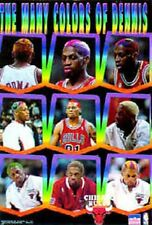 "Dennis Rodman""The Many Colors of Dennis""Chicago Bulls Starline Poster OOP"