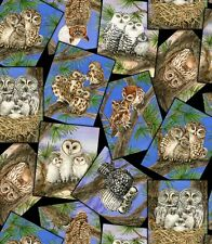 Fat Quarter Various Owl Families Patch Small Panels 100% Cotton Quilting Fabric