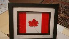 CANADA FLAG  / REAL TREATED  MAPLE LEAF FROM KITCHNER , ONTARIO