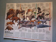 NEW VIEW OF DINOSAURS +  MARCH TO EXTINCTION MAP National Geographic June 1989
