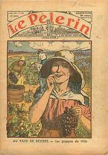 les Vendanges Grappes de Raisins Récolte Beziers France 1936 ILLUSTRATION