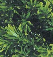 1/35 Scale Jungle Plant #8