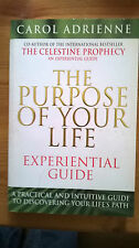 NEW Purpose of Your Life Experimental Guide: A Practical and Intuitive Guide