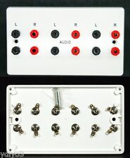 AV Wall Plate, 12 x 4mm 'Banana' Audio Speaker Sockets, 6 Left/Right connectors
