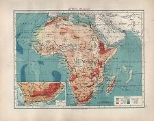 Carte antique 1904 ~ AFRIQUE PHYSIQUE terres hauteurs Sahara inserts colonie du Cap