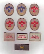 1940's British / United Kingdom / UK Boy Scout Specialist Tenderfoot Badge & WB