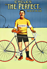 Cycles  The Perfect  Cycle Bike bicycle Deco  Poster Print