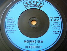 "BLACKFOOT - MORNING DEW  7"" VINYL"