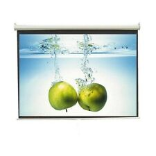 WALL TYPE, 9 Ft. x 5 Ft. (16:9 FORMAT) TECHNOLITE PROJECTOR SCREEN, A+++++ GRADE