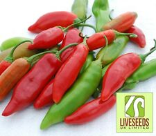 Liveseeds - Chili / Chilli Pepper - Aji Delight - 10 Seeds