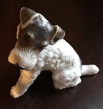 rosenthal  fox terrier 1243