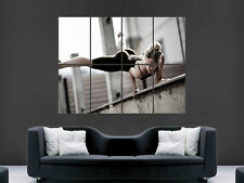 HOT SEXY GIRL GYMNAST FLEXIBLE FITNESS  ART  LARGE WALL POSTER PICTURE PRINT