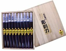 Michihamono 10pcs Woody Basic Wood Carving Tool Kit U V Gouge Skewed Chisel