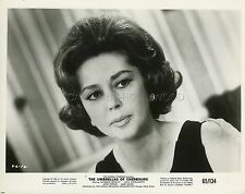ANNE VERNON LES PARAPLUIES DE CHERBOURG 1964 VINTAGE PHOTO ORIGINAL #6