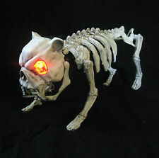 Lighted Barking Skeleton Dog Scary Funny Halloween Party Decoration Prop