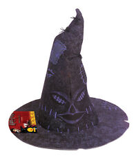 HARRY POTTER Sorting Hat Boys Girls Hermione Fancy Dress Costume Accessory 49957